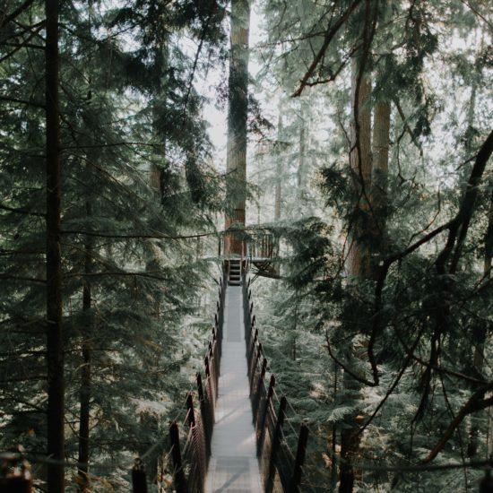 【体験談】カナダで生活して感じた5つのこと